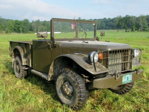 1951 Dodge M37 for sale